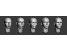 ARM356028 Bald female heads (set1)