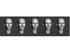 ARM356030 Bald female heads (set2)